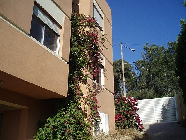 Fachada - Chalet en alquiler en calle San Lorenzo, El Vedat en Torrent - 159980957