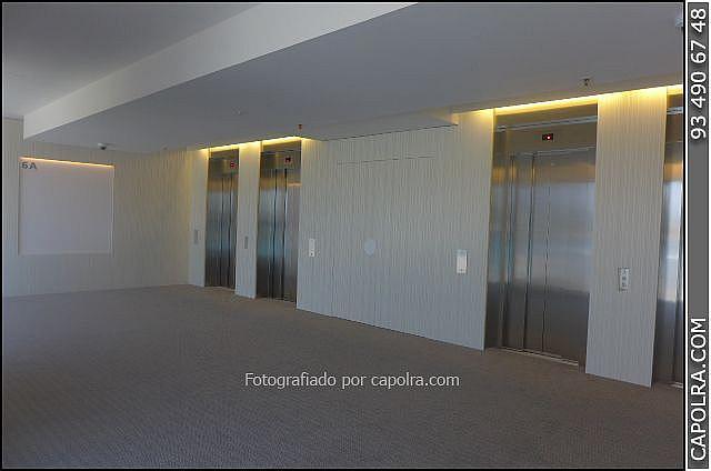 Imagen sin descripción - Oficina en alquiler en Ciutat vella en Barcelona - 271186914
