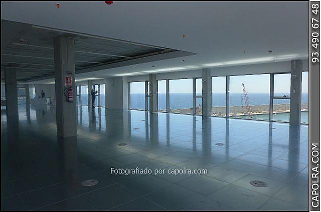 Imagen sin descripción - Oficina en alquiler en Ciutat vella en Barcelona - 271186926