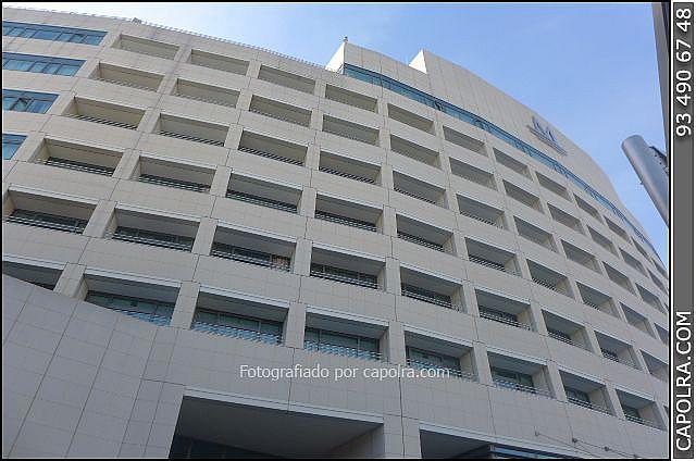 Imagen sin descripción - Oficina en alquiler en El Raval en Barcelona - 275598485