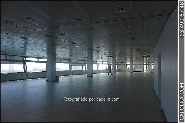 Imagen sin descripción - Oficina en alquiler en El Raval en Barcelona - 277299763