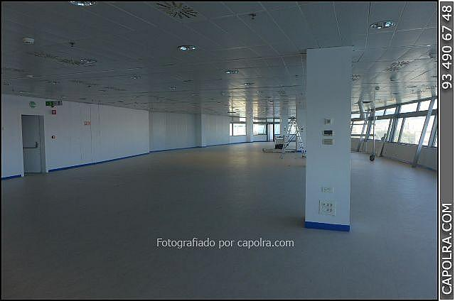 Imagen sin descripción - Oficina en alquiler en El Raval en Barcelona - 277299766