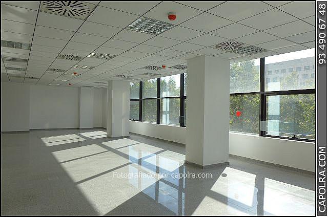 Imagen sin descripción - Oficina en alquiler en Les corts en Barcelona - 329758224