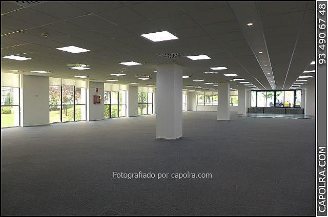 Imagen sin descripción - Oficina en alquiler en Barcelona - 324160927