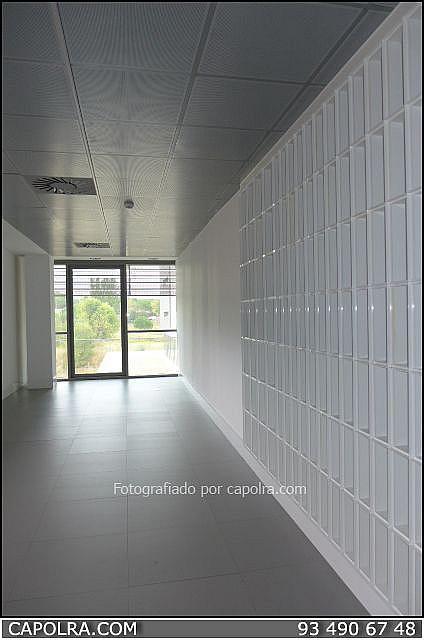 Imagen sin descripción - Oficina en alquiler en Sant Cugat del Vallès - 330315001