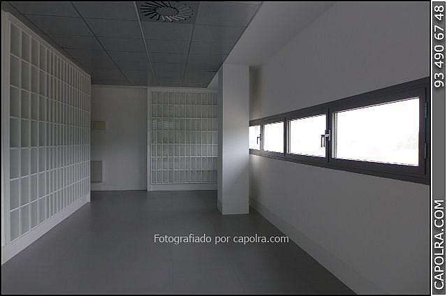 Imagen sin descripción - Oficina en alquiler en Sant Cugat del Vallès - 330315004