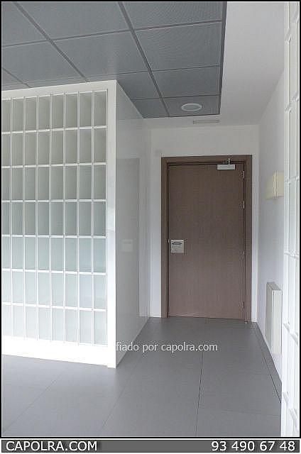 Imagen sin descripción - Oficina en alquiler en Sant Cugat del Vallès - 330315013