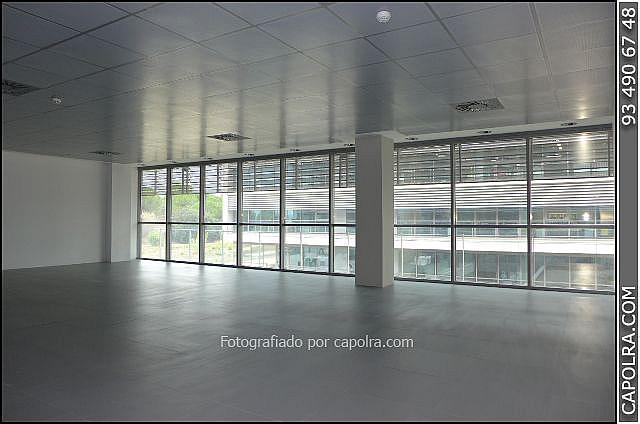 Imagen sin descripción - Oficina en alquiler en Sant Cugat del Vallès - 330314683