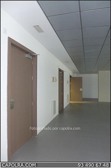 Imagen sin descripción - Oficina en alquiler en Sant Cugat del Vallès - 330314692