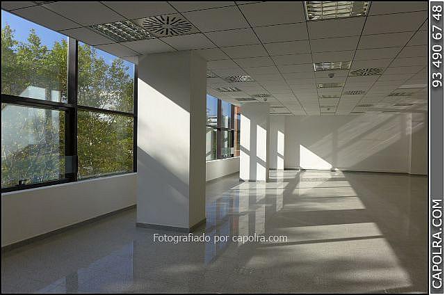 Imagen sin descripción - Oficina en alquiler en Les corts en Barcelona - 329758017