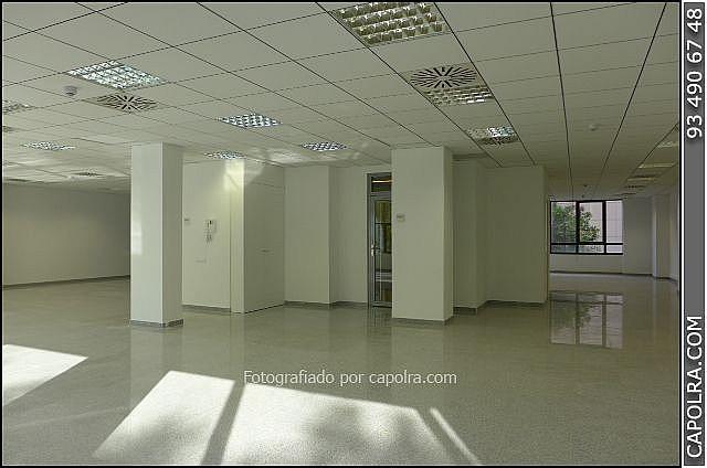 Imagen sin descripción - Oficina en alquiler en Les corts en Barcelona - 329758020