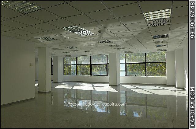 Imagen sin descripción - Oficina en alquiler en Les corts en Barcelona - 329758026