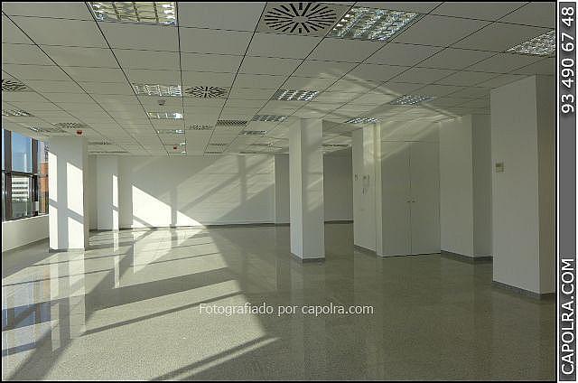 Imagen sin descripción - Oficina en alquiler en Les corts en Barcelona - 329758059