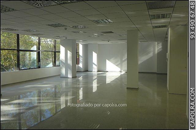 Imagen sin descripción - Oficina en alquiler en Les corts en Barcelona - 329758107