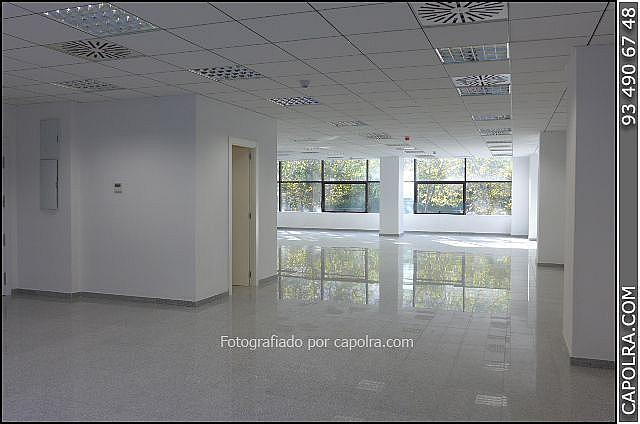 Imagen sin descripción - Oficina en alquiler en Les corts en Barcelona - 329758116