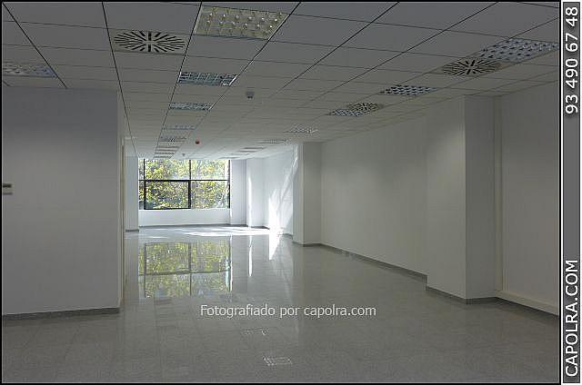 Imagen sin descripción - Oficina en alquiler en Les corts en Barcelona - 329758119