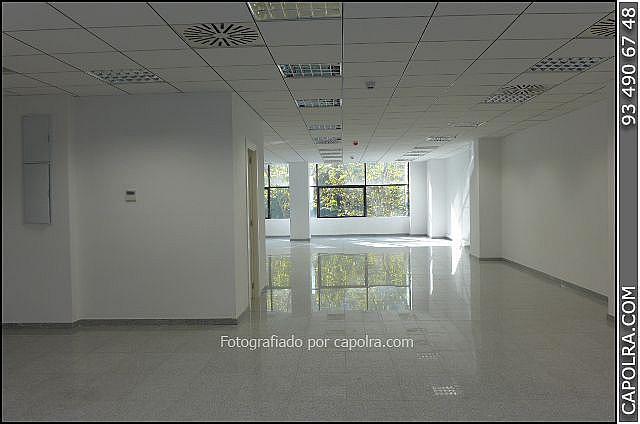 Imagen sin descripción - Oficina en alquiler en Les corts en Barcelona - 329758122