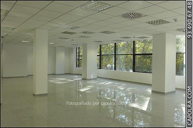 Imagen sin descripción - Oficina en alquiler en Les corts en Barcelona - 329758128