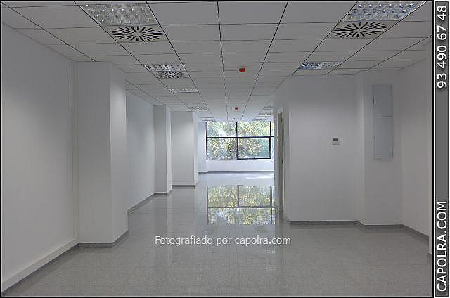 Imagen sin descripción - Oficina en alquiler en Les corts en Barcelona - 329758134