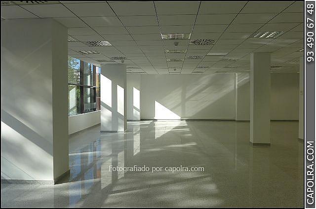 Imagen sin descripción - Oficina en alquiler en Les corts en Barcelona - 329758140
