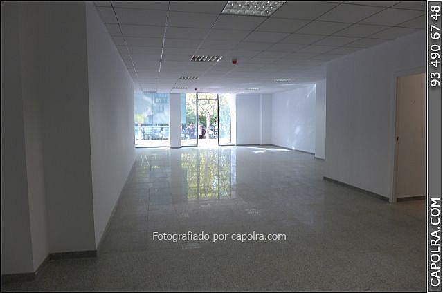 Imagen sin descripción - Oficina en alquiler en Les corts en Barcelona - 329758161