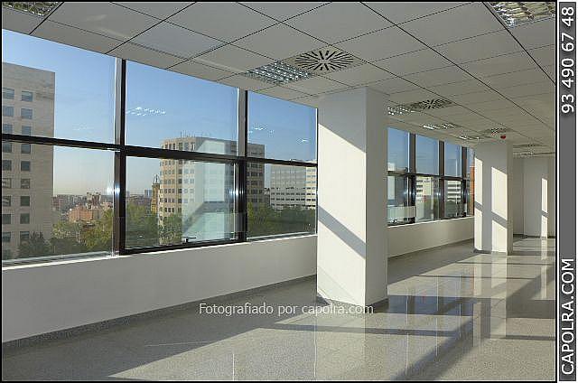 Imagen sin descripción - Oficina en alquiler en Les corts en Barcelona - 330314452