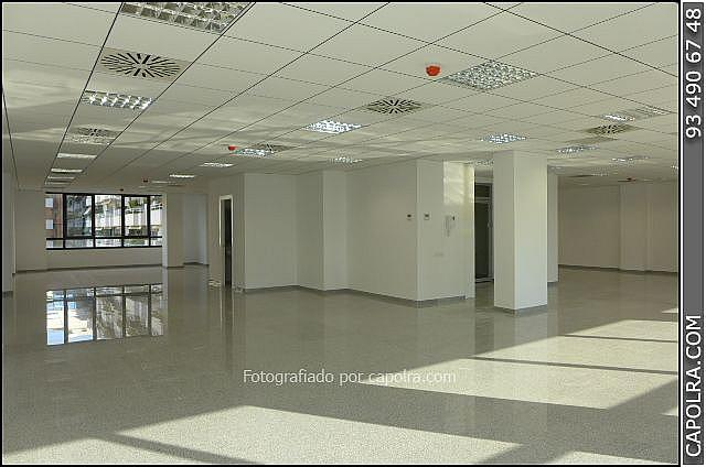 Imagen sin descripción - Oficina en alquiler en Les corts en Barcelona - 330314458