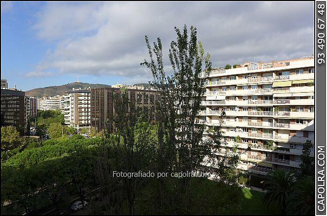 Imagen sin descripción - Oficina en alquiler en Les corts en Barcelona - 330314479