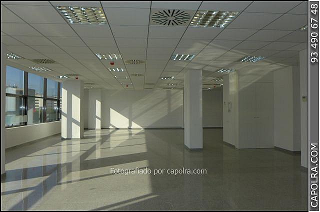 Imagen sin descripción - Oficina en alquiler en Les corts en Barcelona - 330314503