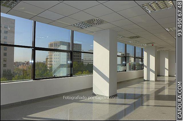 Imagen sin descripción - Oficina en alquiler en Les corts en Barcelona - 330314506