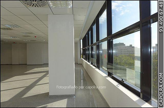 Imagen sin descripción - Oficina en alquiler en Les corts en Barcelona - 330314515