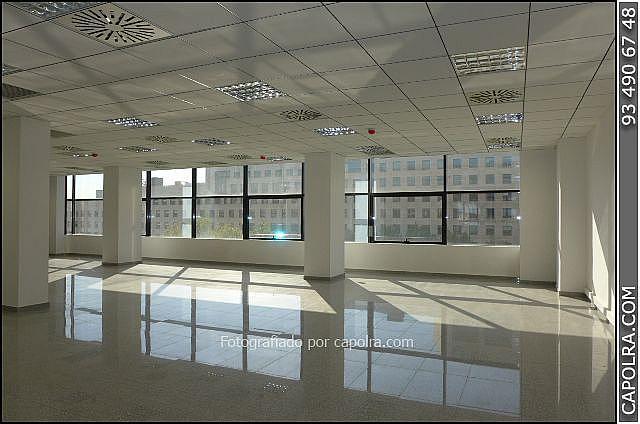 Imagen sin descripción - Oficina en alquiler en Les corts en Barcelona - 330314524