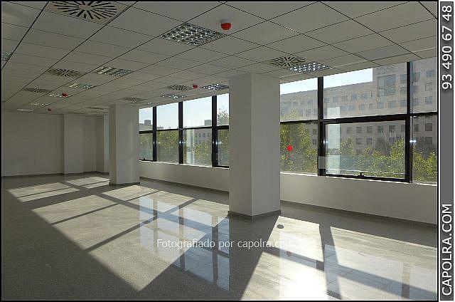 Imagen sin descripción - Oficina en alquiler en Les corts en Barcelona - 330314545