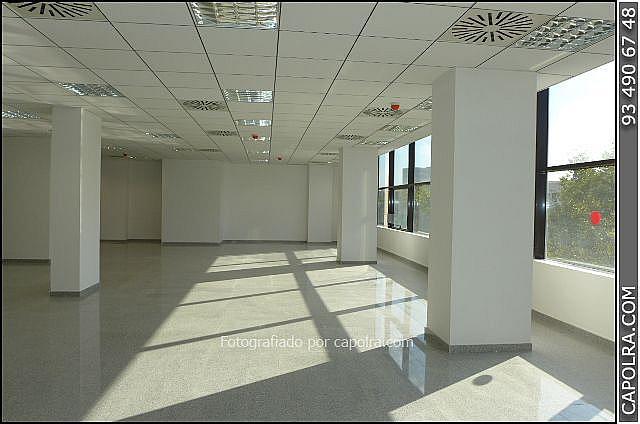 Imagen sin descripción - Oficina en alquiler en Les corts en Barcelona - 330314548