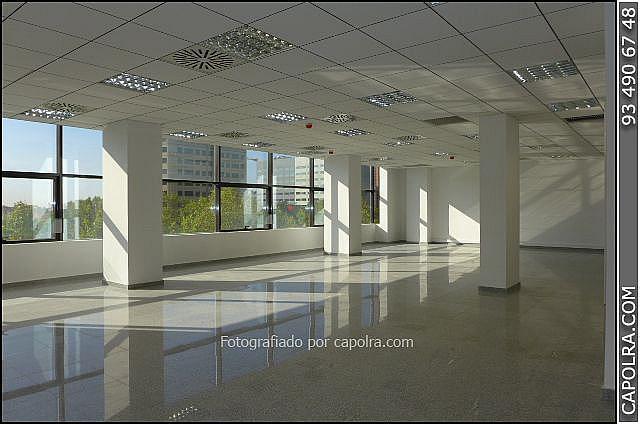 Imagen sin descripción - Oficina en alquiler en Les corts en Barcelona - 330314557