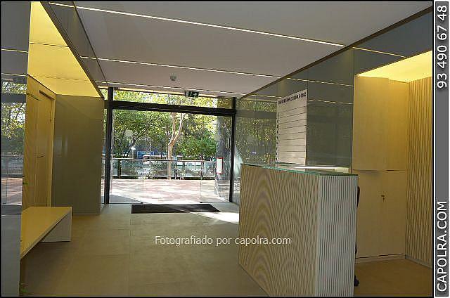 Imagen sin descripción - Oficina en alquiler en Les corts en Barcelona - 330314575