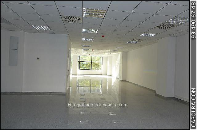 Imagen sin descripción - Oficina en alquiler en Les corts en Barcelona - 330314593