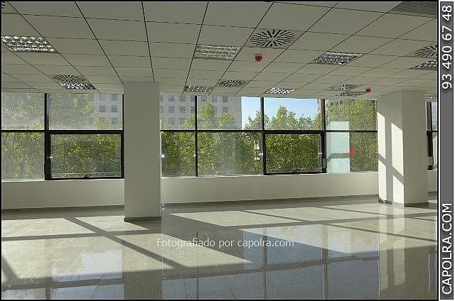 Imagen sin descripción - Oficina en alquiler en Les corts en Barcelona - 330314605