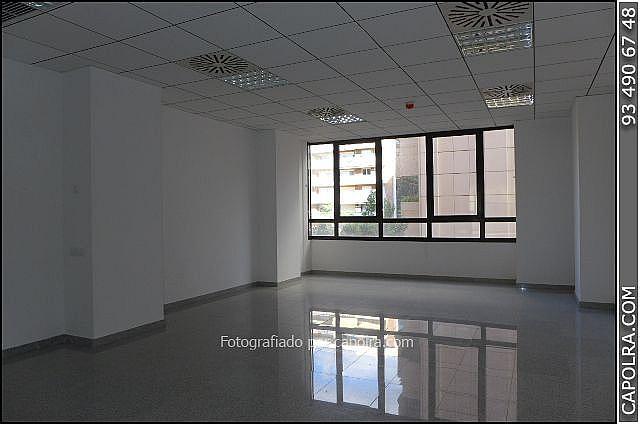 Imagen sin descripción - Oficina en alquiler en Les corts en Barcelona - 330314608