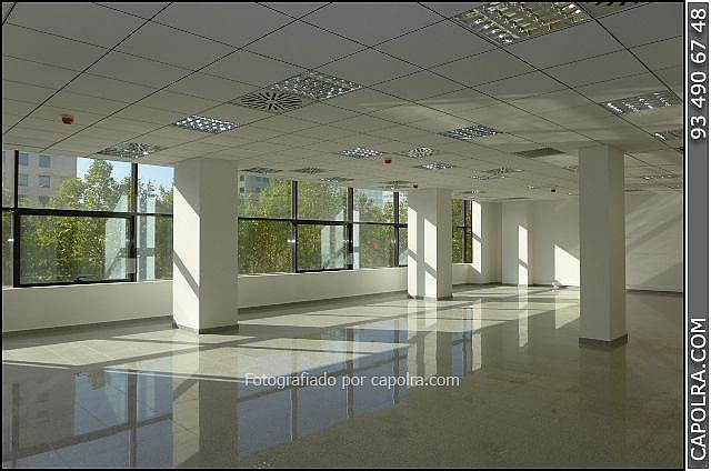 Imagen sin descripción - Oficina en alquiler en Les corts en Barcelona - 330314614