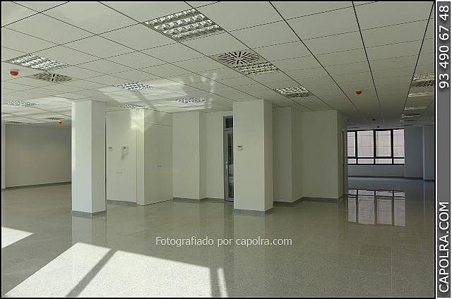 Imagen sin descripción - Oficina en alquiler en Les corts en Barcelona - 330314617