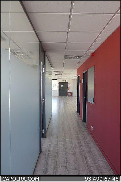 Imagen sin descripción - Nave en alquiler en Zona Franca- Port en Barcelona - 220369695