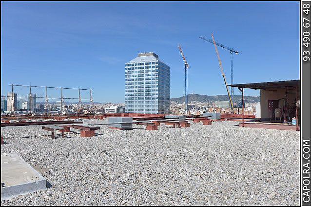 Imagen sin descripción - Nave en alquiler en Zona Franca- Port en Barcelona - 220369728