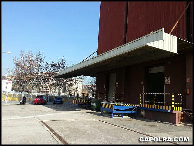Imagen sin descripción - Nave en alquiler en Zona Franca- Port en Barcelona - 334130332
