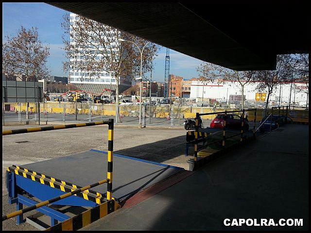 Imagen sin descripción - Nave en alquiler en Zona Franca- Port en Barcelona - 334130335