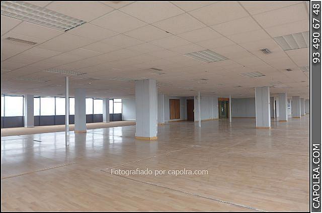 Imagen sin descripción - Oficina en alquiler en Sant Joan Despí - 220380159