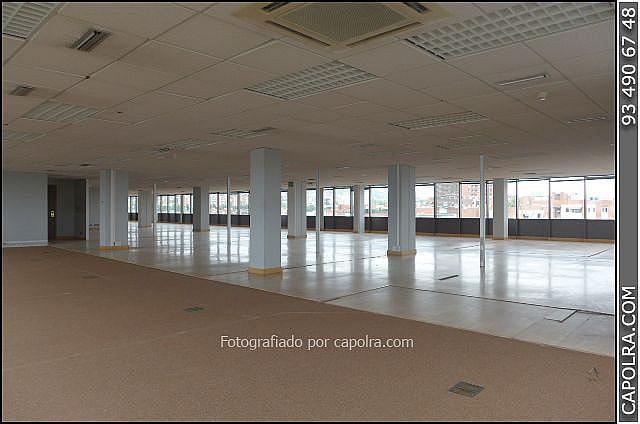 Imagen sin descripción - Oficina en alquiler en Sant Joan Despí - 220380192