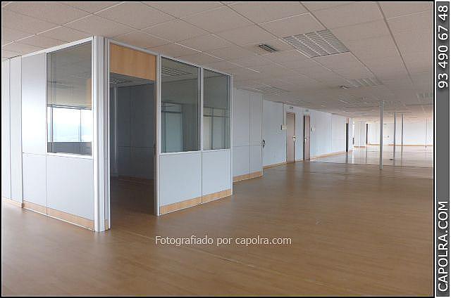 Imagen sin descripción - Oficina en alquiler en Sant Joan Despí - 220380258