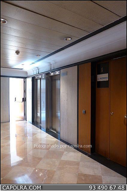 Imagen sin descripción - Oficina en alquiler en Les corts en Barcelona - 245386250