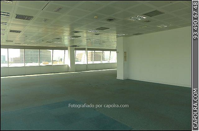 Imagen sin descripción - Oficina en alquiler en El Poble Sec-Montjuïc en Barcelona - 220371261